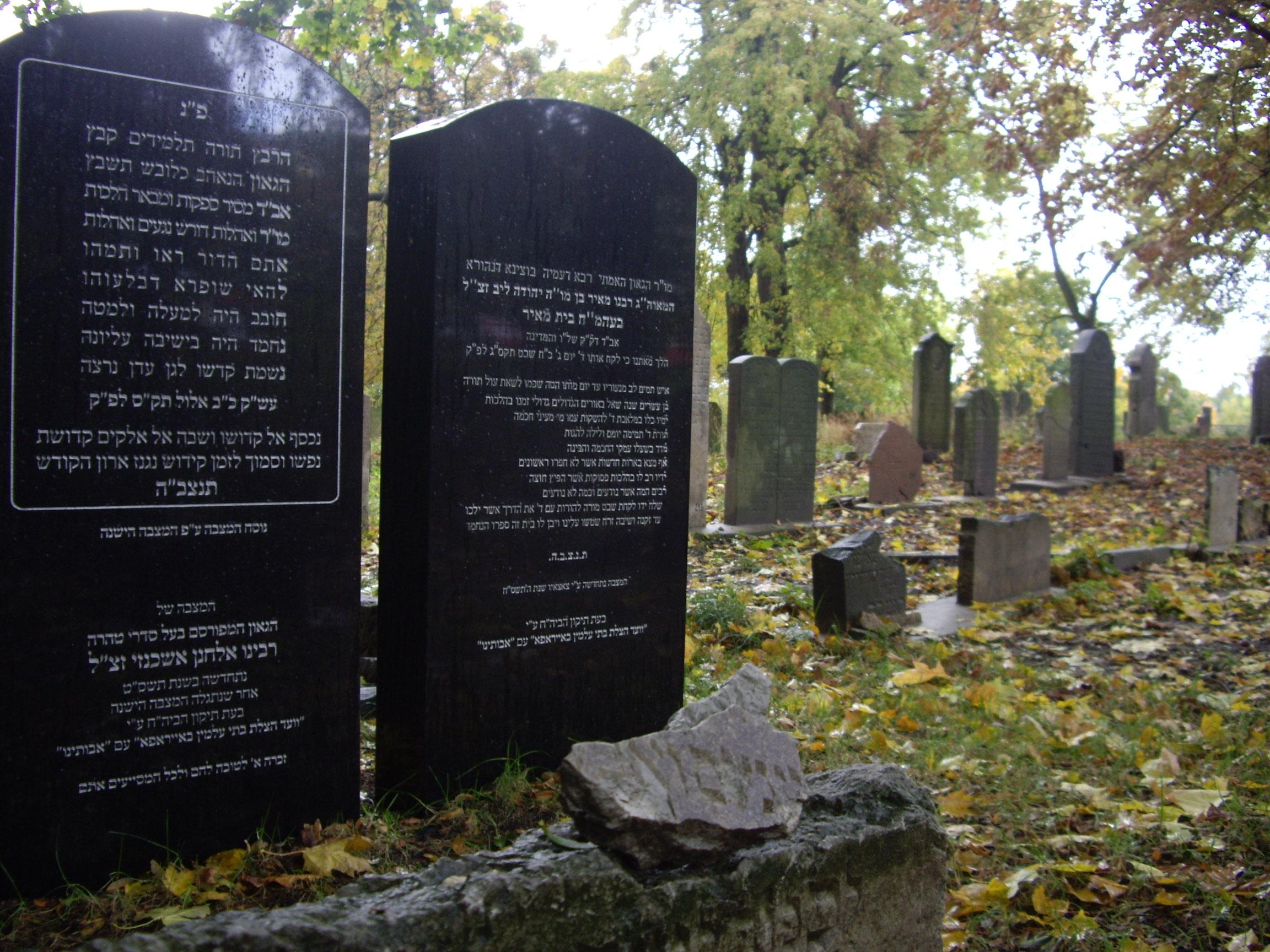 Cmentarz Żydowski w Gdańsku 2009 r.