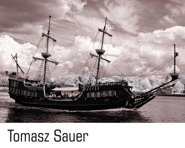 fot. Tomasz Sauer
