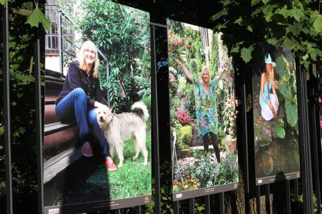 Danuta Poczman - wystawa Kobiety sukcesu