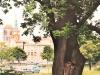 Parki w Gdańskuv