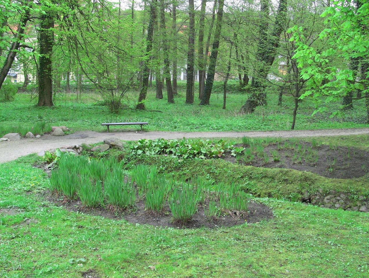 Park w Królewskiej Dolinie w Gdańsku