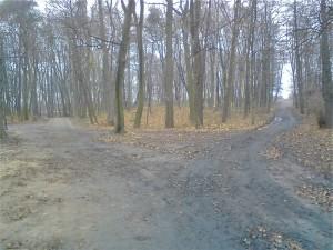 Park Brzeźnieński / Fot. Jacko