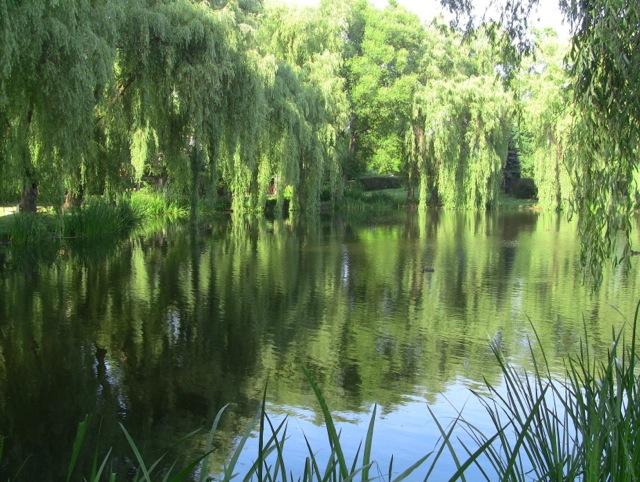 Gdańsk Park Oruński