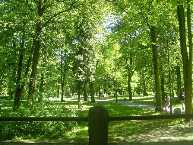 Gdańsk - park na terenie dawnego cmentarza - spacer