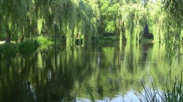 Dzień dobry, tu Gdańsk – Park Oruński
