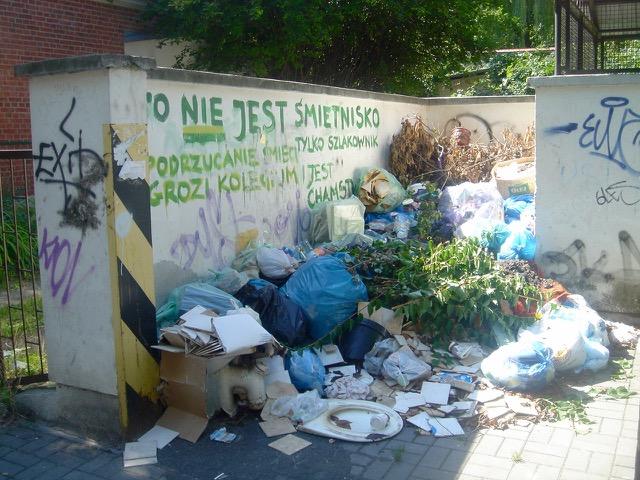Śmietnik przy ul. Puszkina