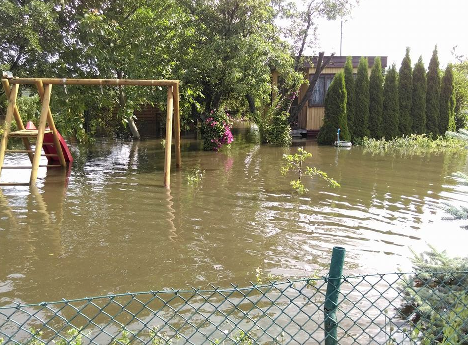 """Ogród dzialkowy """"Zaspa"""" przy Uczniowskiej / Kochanowskiego"""