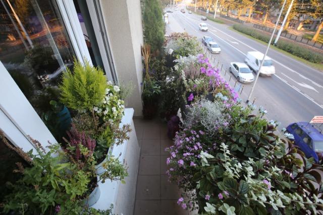 najpiękniejszy w Gdańsku balkon