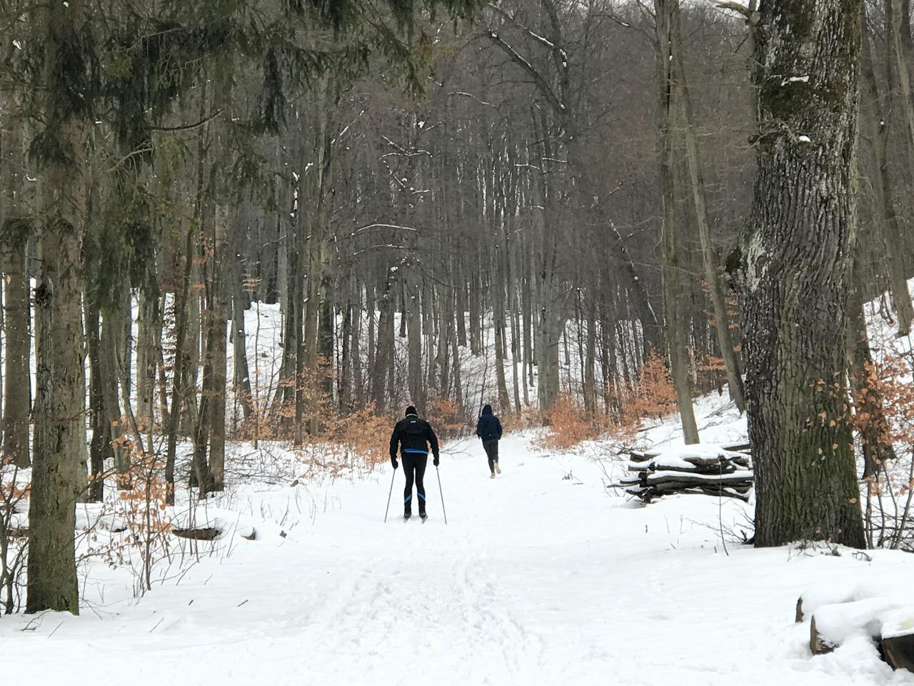Pomysł na spacer w Gdańsku