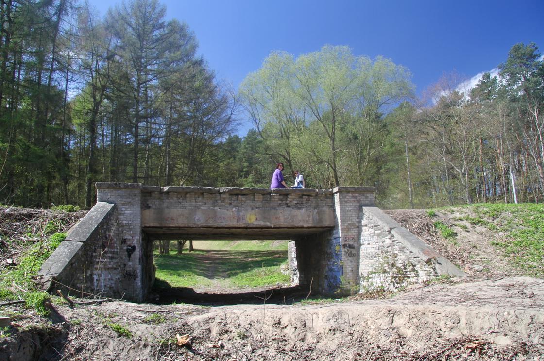 Strzyża - mały mostek